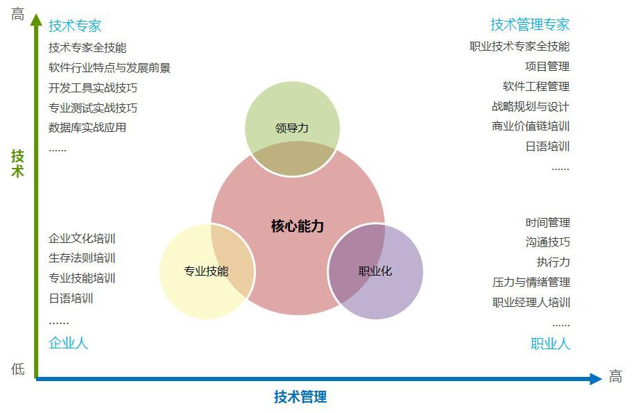 公司员工信息管理结构图